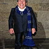 Warwick Davis as Wollivan