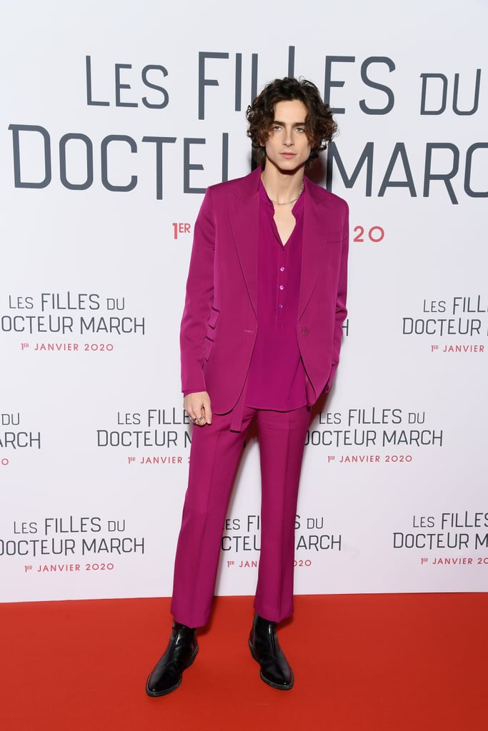 "Timothée Chalamet at the ""Little Women"" Premiere, December 2019"