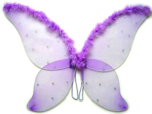 Large Fairy Wings With Feather