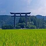 Walking Tour of Japan