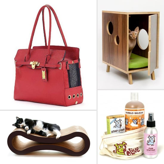 Best Pet Products of 2012