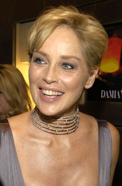 Sugar Bits – Sharon Stone Loses Custody Of Son
