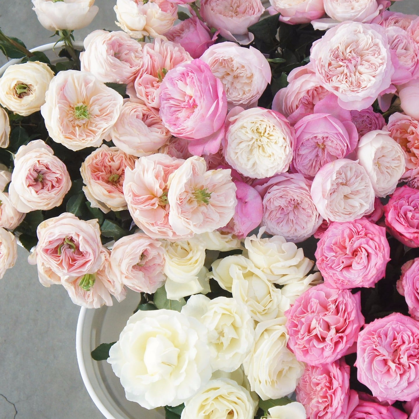 Peony Alternatives | POPSUGAR Home