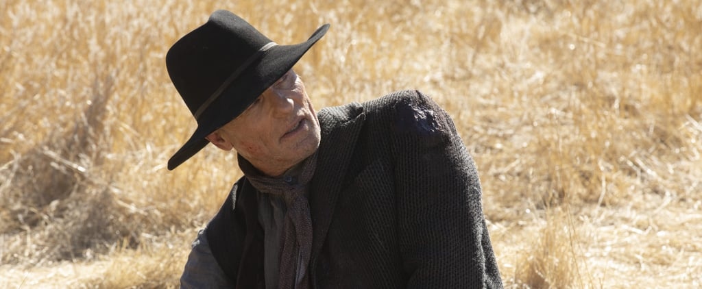 Westworld Season 2 Finale Postcredits Scene Explained