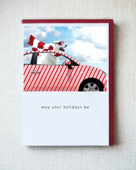 Zophie Holiday Greeting Cards