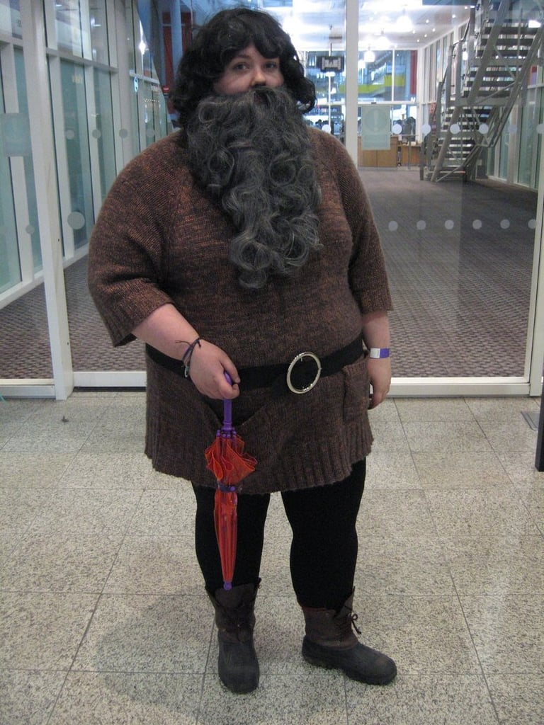 Share This Link Copy & Hagrid | Harry Potter Costumes | POPSUGAR Australia Tech Photo 33