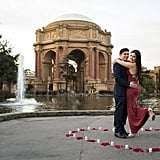 Proposal at the Palace of Fine Arts