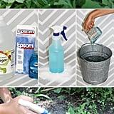 3-Ingredient Natural Weed Killer That Really Works