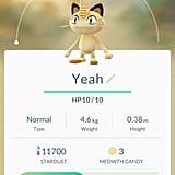 "Meowth aka ""Yeah"""