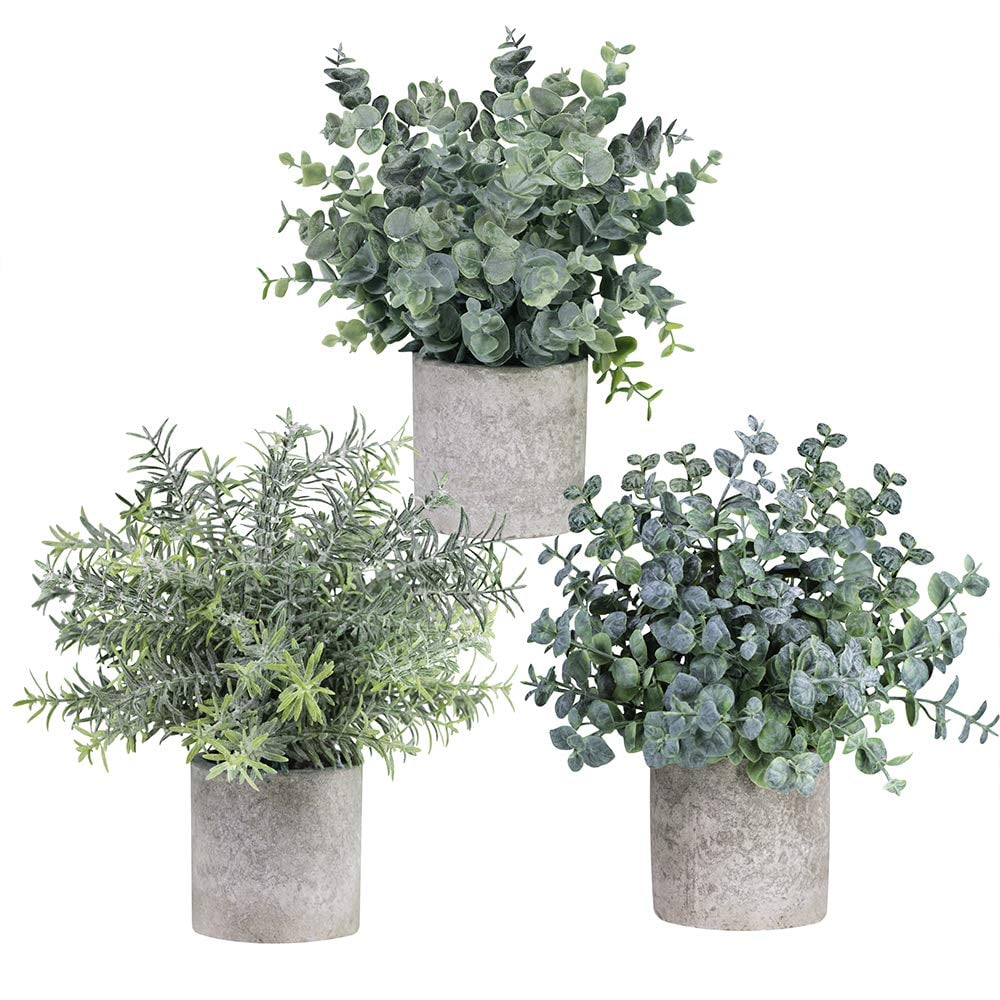 Winlyn Mini Potted Artificial Eucalyptus Plants