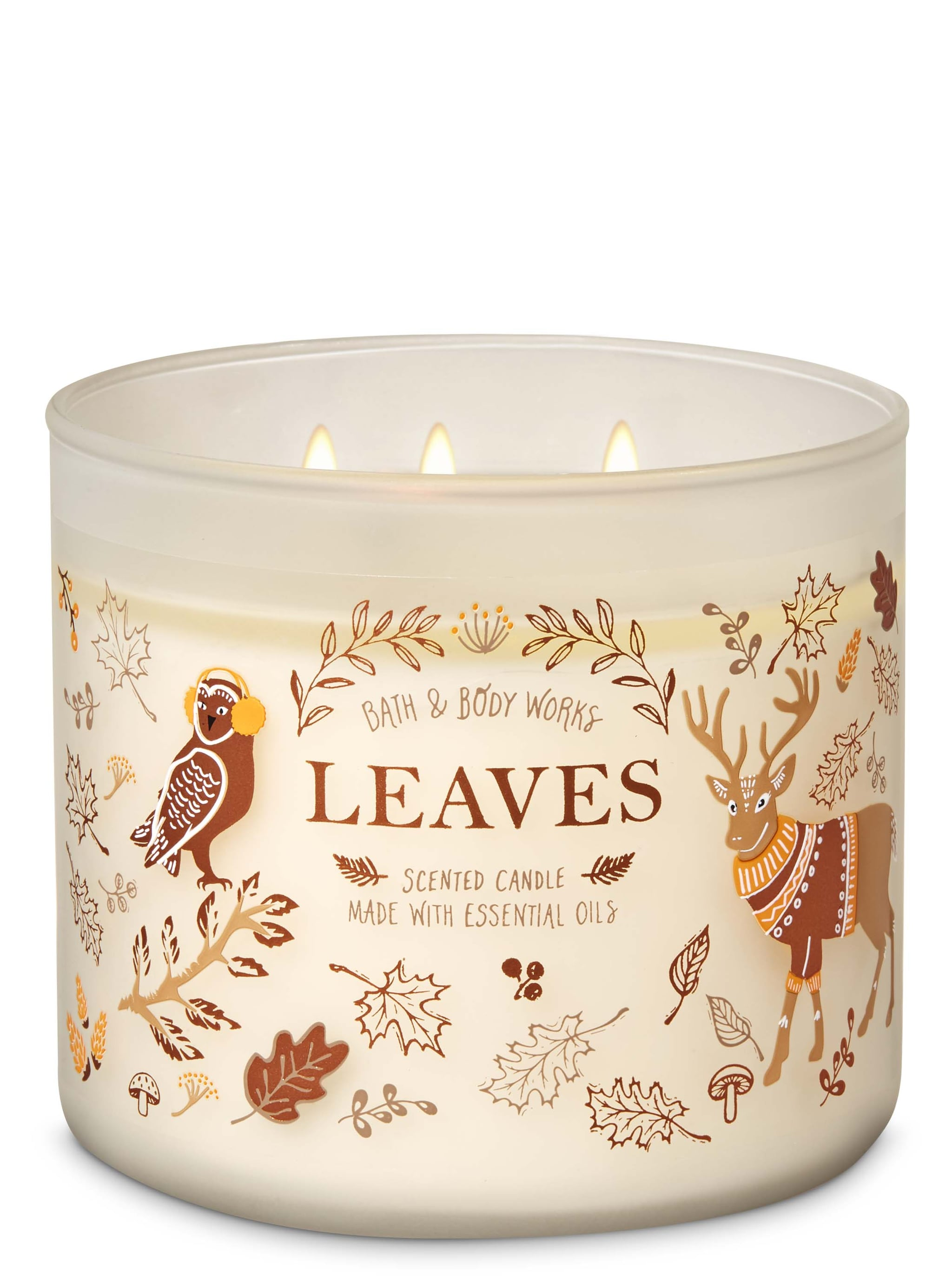 Candle leaves