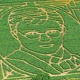 A Vision in Corn: Part 2