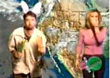 Tom Green: A Weatherman?