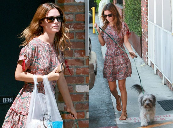 Photos of Rachel Bilson Out in LA with Her Dog Thurman Murman
