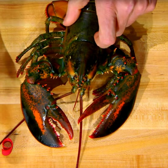 How Gordon Ramsay Shells a Lobster