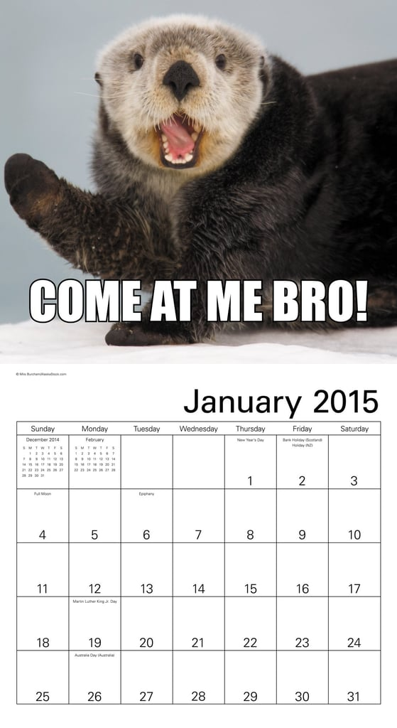 Animal Memes Wall Calendar ($13)