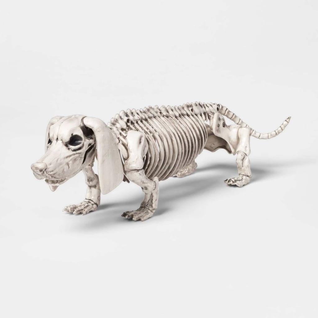 Dachshund Skeleton