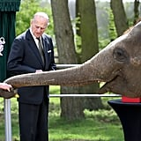 In April, Queen Elizabeth II and Prince Philip fed an elephant when they visited the ZSL Whipsnade Zoo in Dunstable, UK.