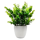 Offidix Mini Artificial Eucalyptus Plant