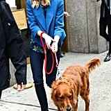 Emma Stone walked her boyfriend Andrew Garfield's dog in NYC in May 2013.