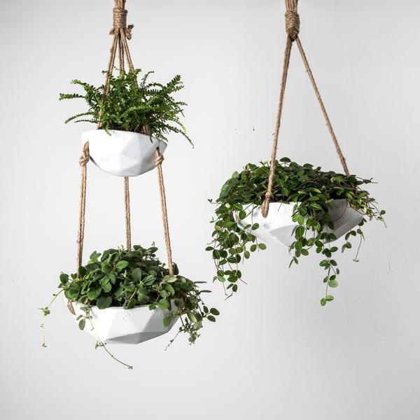 batchIxpabM Flower Pots Houseplants on gardening pots, herb pots, container pots, nature pots, plants pots, bulb pots, green pots, moss pots, roses pots, greenhouse pots, spring pots, succulents pots, cactus pots, orchid pots, nursery pots, annual pots, water pots, bamboo pots, vegetable pots, planter pots,