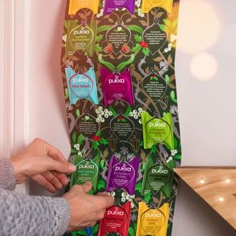 Tea Advent Calendar For Holiday Wellness Gifts