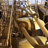 Undergoing First Fermentation