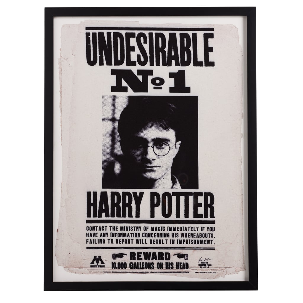 Undesirable No. 1 Framed Wall Art ($79)