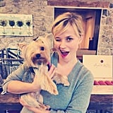 Reese found a new friend in Ellie, the one-eyed rescue dog.  Source: Reese Witherspoon on WhoSay