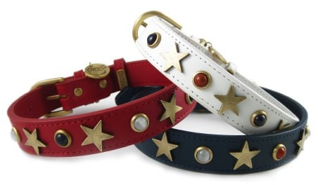 American Dog Studded Collar ($42)