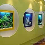 AquaVista 500 Fish Tank