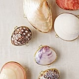 Shell Trinket Box