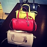 Mini brights at Coach.