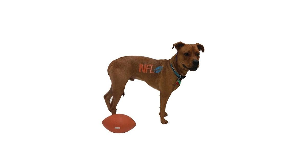 Dog-Safe Paint | POPSUGAR Pets Photo 4