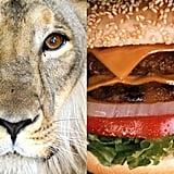 Lion Meat: No