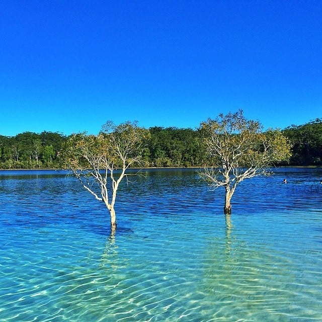 Fraser Island Australia: Best Pictures Of Australia On Instagram