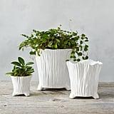 Ceramic Rose Pot