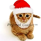 Comfort Santa Dog or Cat Costume