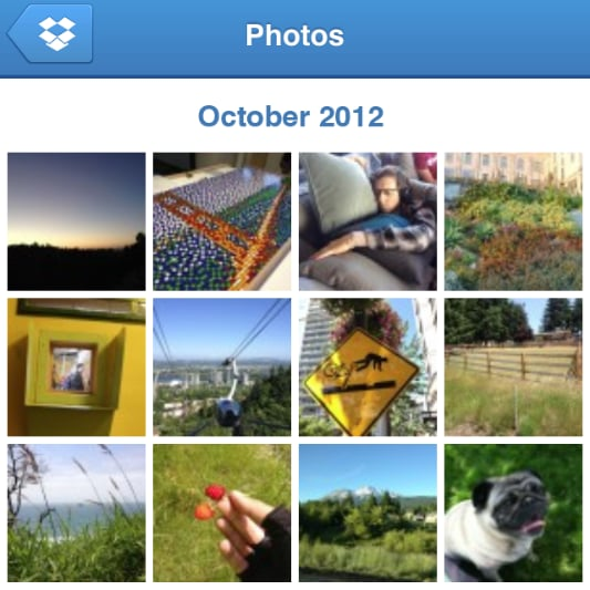 New Dropbox Photo Gallery Update