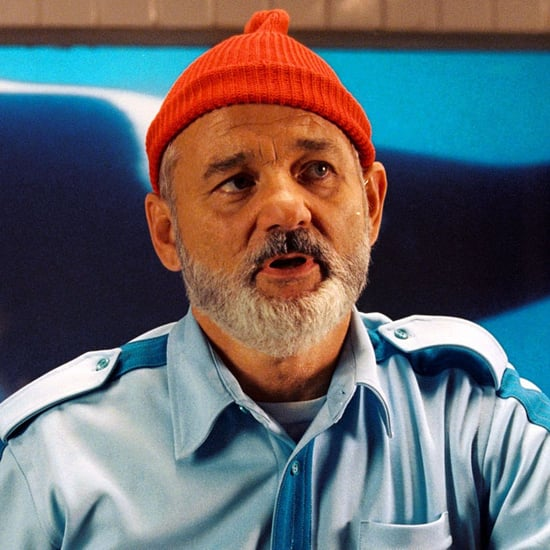Bill Murray Halloween Costume Ideas