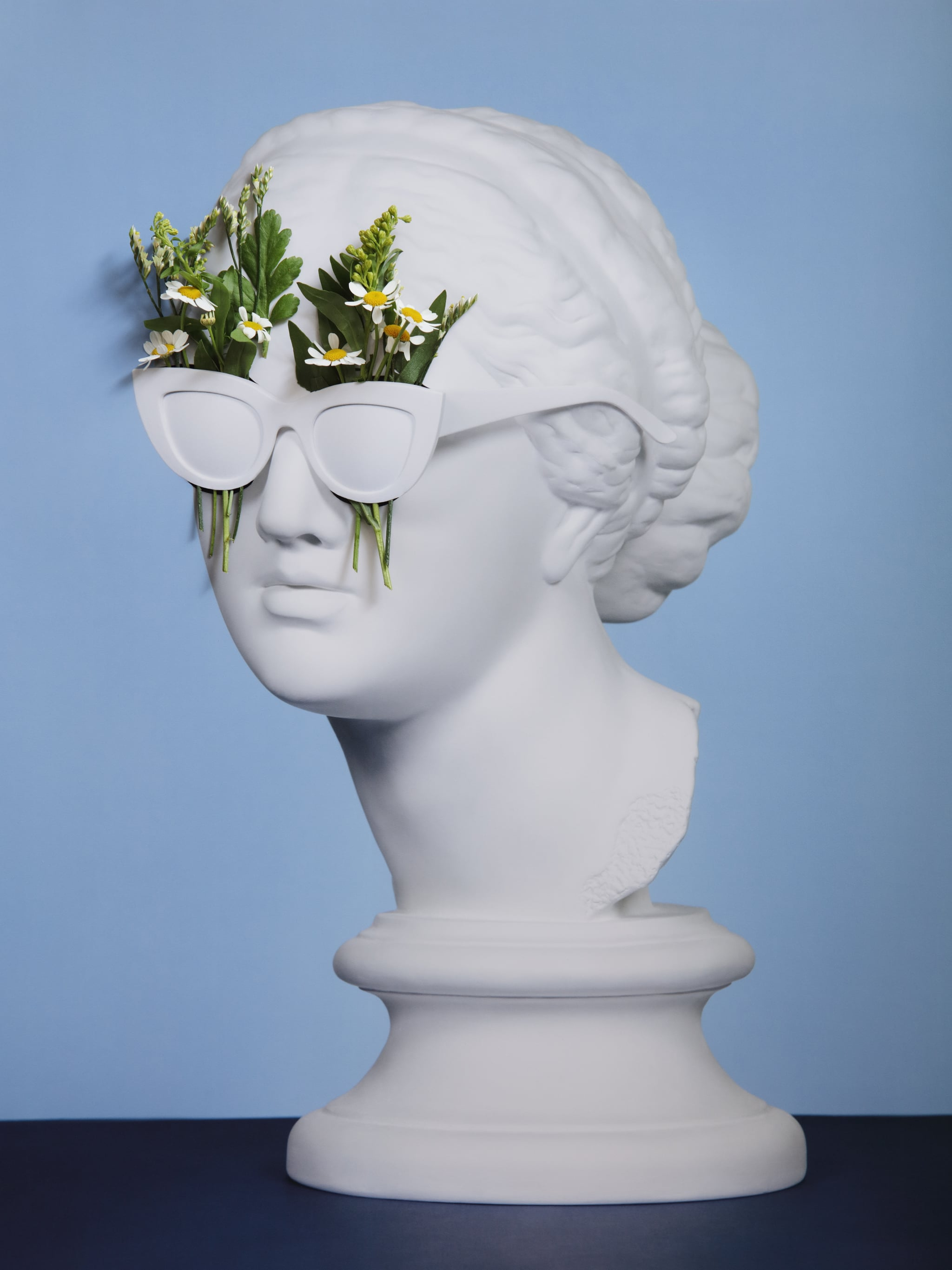 Analog collage with plaster head model (mass produced replica of Head of Aphrodite of Knidos) and plants