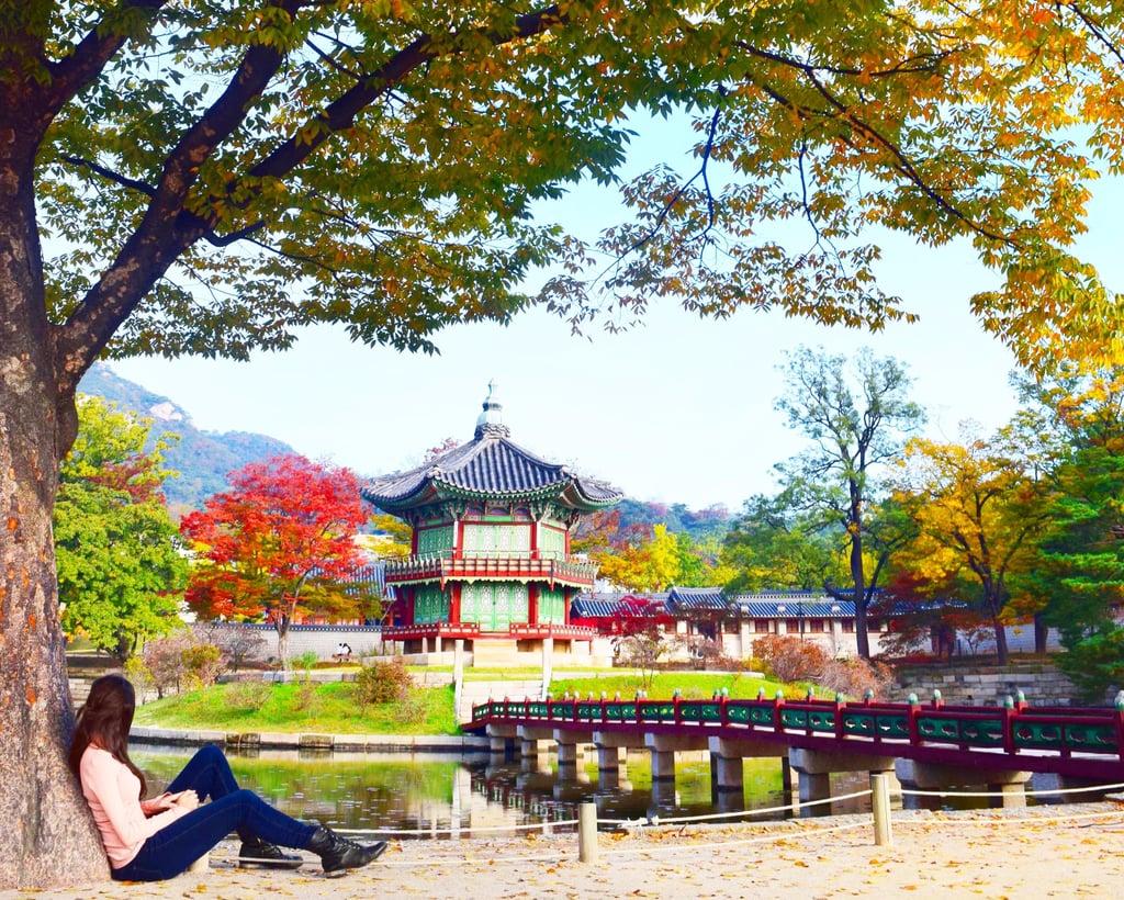 South Korea Travel Tips