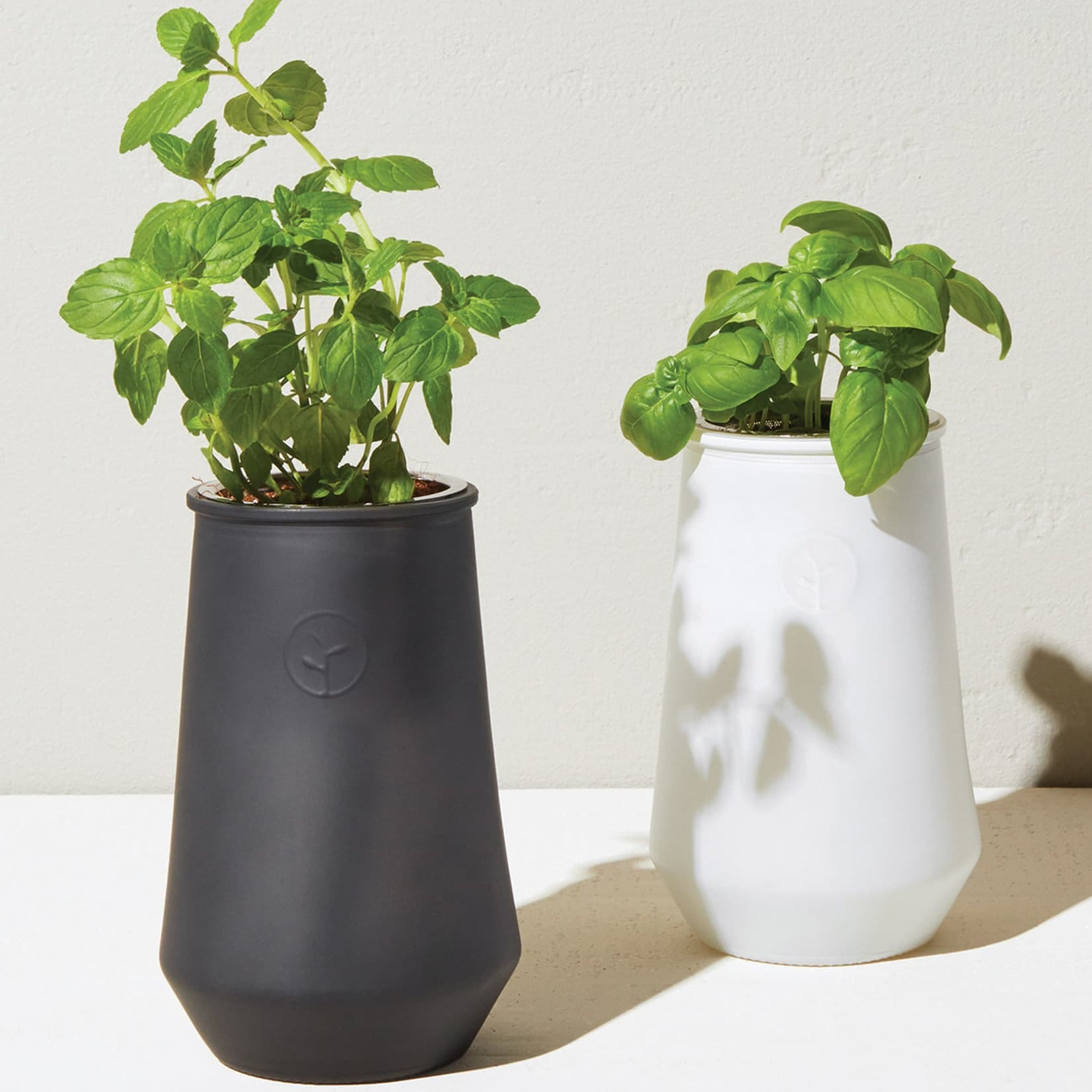 Cute and <b>Cheap</b> Gifts Under $50 From Nordstrom | POPSUGAR Smart Living