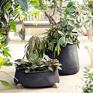 Best Outdoor Planters From Terrain