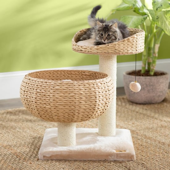 Cat Trees That Aren't Ugly and Look Great in Your Home