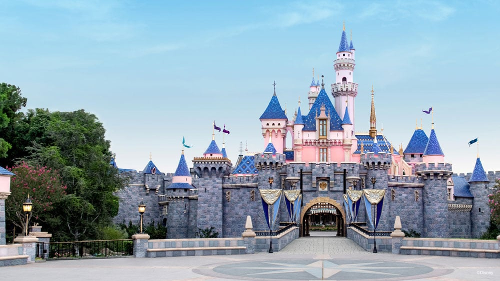 Disneyland Sleeping Beauty Castle Zoom Background