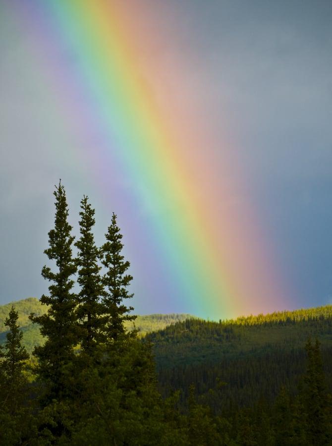 Denali National Park and Preserve: Alaska