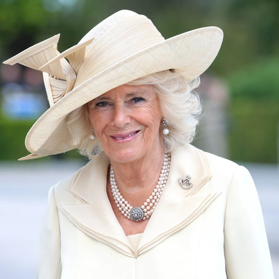 Is Camilla Parker Bowles the Princess of Wales?