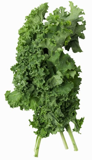 Learn to Love: Kale