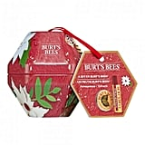 Burts Bees Bit Of Burt's Pomegranate ($9.99)